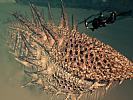 Lost Planet 2 - screenshot #7