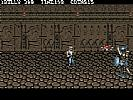 Double Dragon III: The Sacred Stones - screenshot