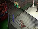 Fire Pro Wrestling World - screenshot #5